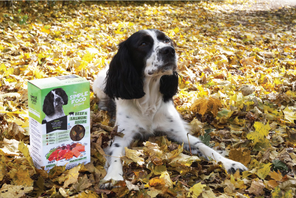 Primer with Beef & Salmon Recipe for dogs