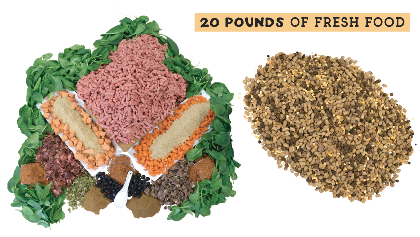 The Simple Food Project Freeze-Dried Dog Food